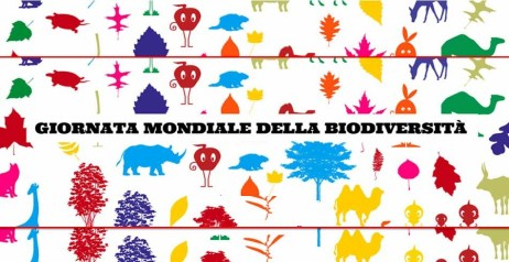 Giornata internazionale della diversità biologica