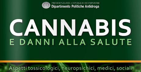 Cannabis e smart drug
