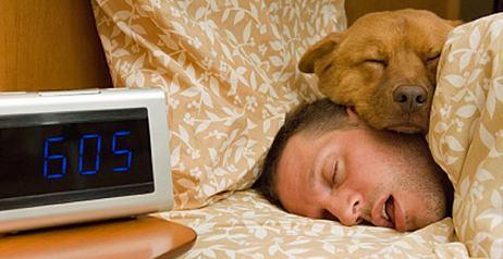 Dormire con gli animali
