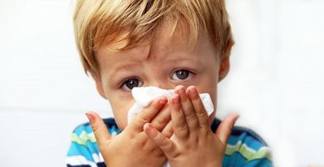 Virus dell'Influenza