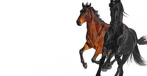 Old town road (remix) Lil nas x