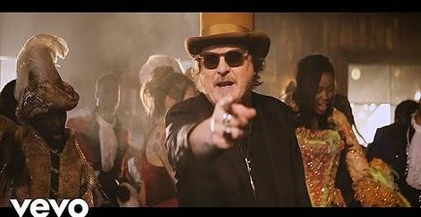 Black cat Zucchero